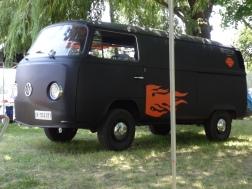 VW Fest (100)