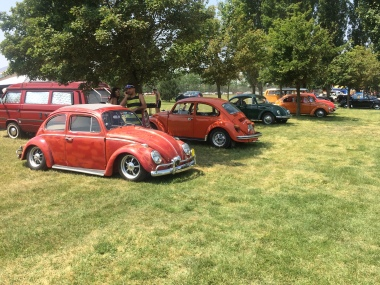VW Fest (191)