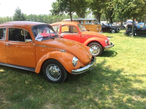 VW Fest (194)