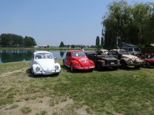 VW Fest (45)