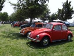 VW Fest (62)