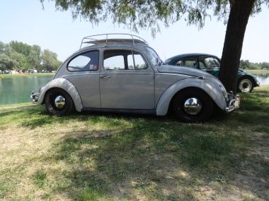 VW Fest (86)
