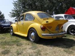 VW Fest (93)